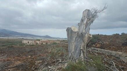 Lost village in the south of Tenerife. #tenerife, #tenerifelife, #island, #islandlife, #travel, #tour, #tourism, #privatetour, #privateguide, #canaryislands, #canarias, #tenerifehost, #shorexcursions, #shoretour, #vip, #viptour, #daytour, #daytourstenerife, #privatetourstenerife, #naturephotography, #nature, #naturebeauty, #trekking, #hiking, #senderismo, #malpaisdelarasca, #walking