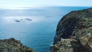 The best snorkeling spots in Tenerife