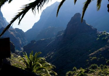 Get a wonderful private tour in Tenerife