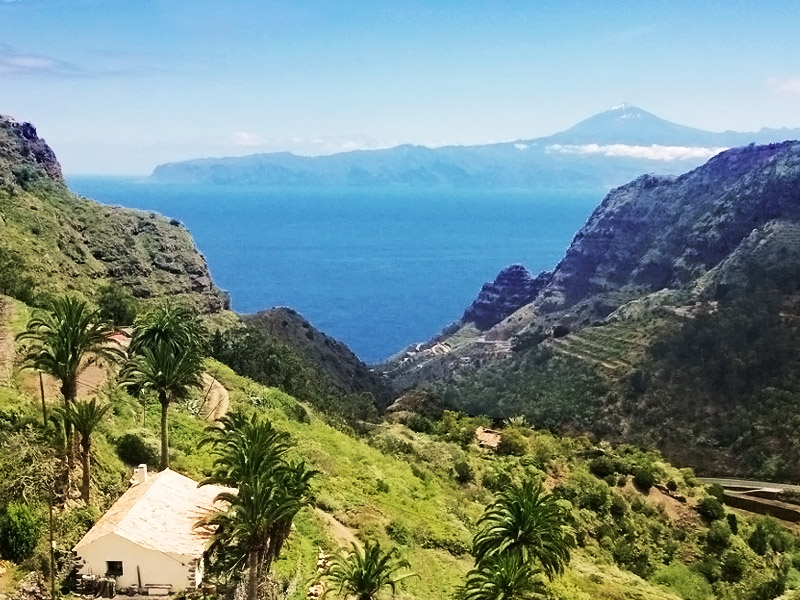 Bus sightseeing tours – the cheapest way to discover Tenerife