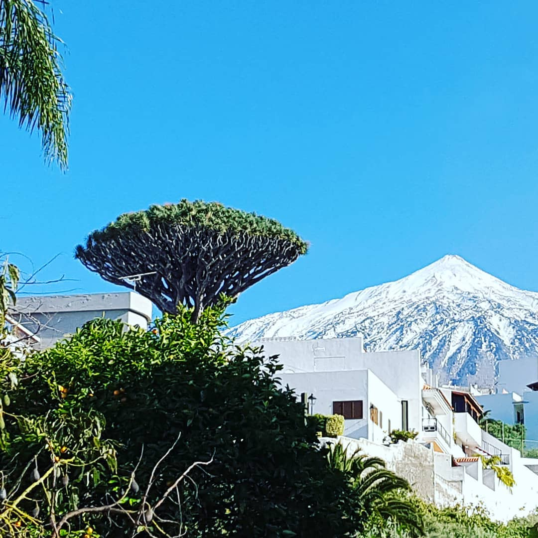 Mt Teide view from Icod de Los Vinos, Tenerife, Canary Islands. On the private VIP tour with @tenerifehost