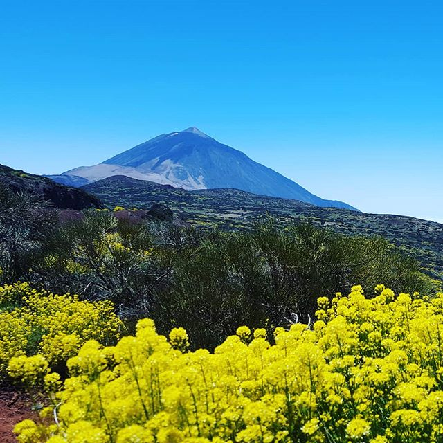 – volcano Teide on Tenerife island along the private VIP tour with Tenerife Host. The highest point of Atlantic Ocean and Spain.